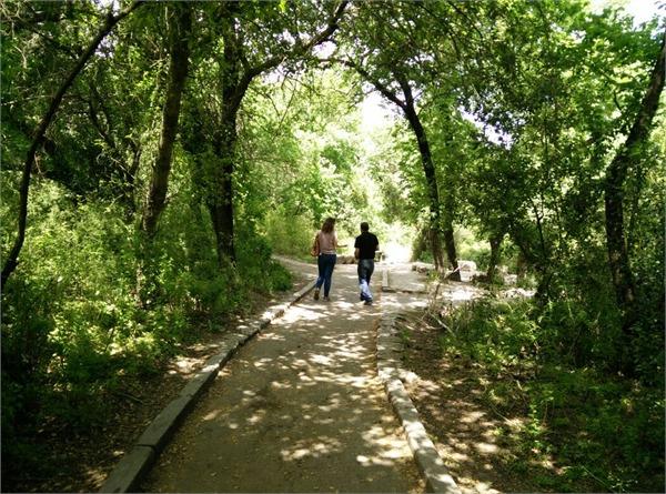 ICA Pessah Walk